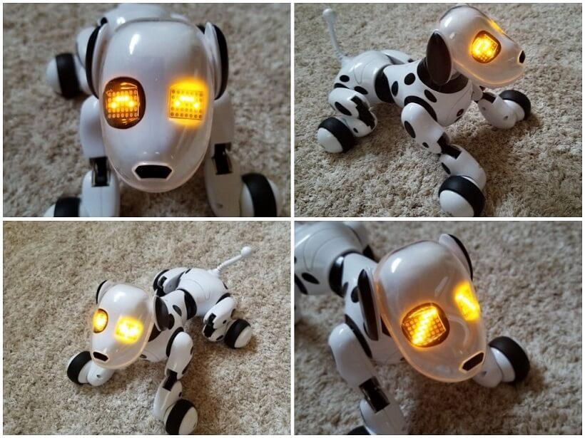 犬型ロボットDIMEI 9007A