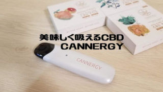 CANNERGY CG1レビュー